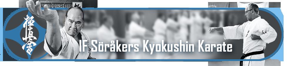 banner till karate hemsidan2