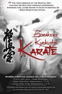 karate affisch motoe ht 2015