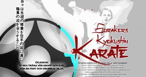 karate affisch ht2016 1080p landscape