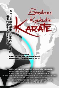 karate affisch ht2016