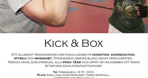kick and box ht2016 final