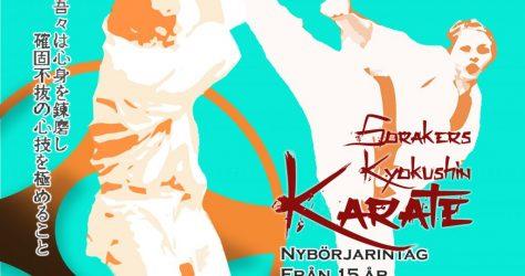 karate affisch vt2017 fb