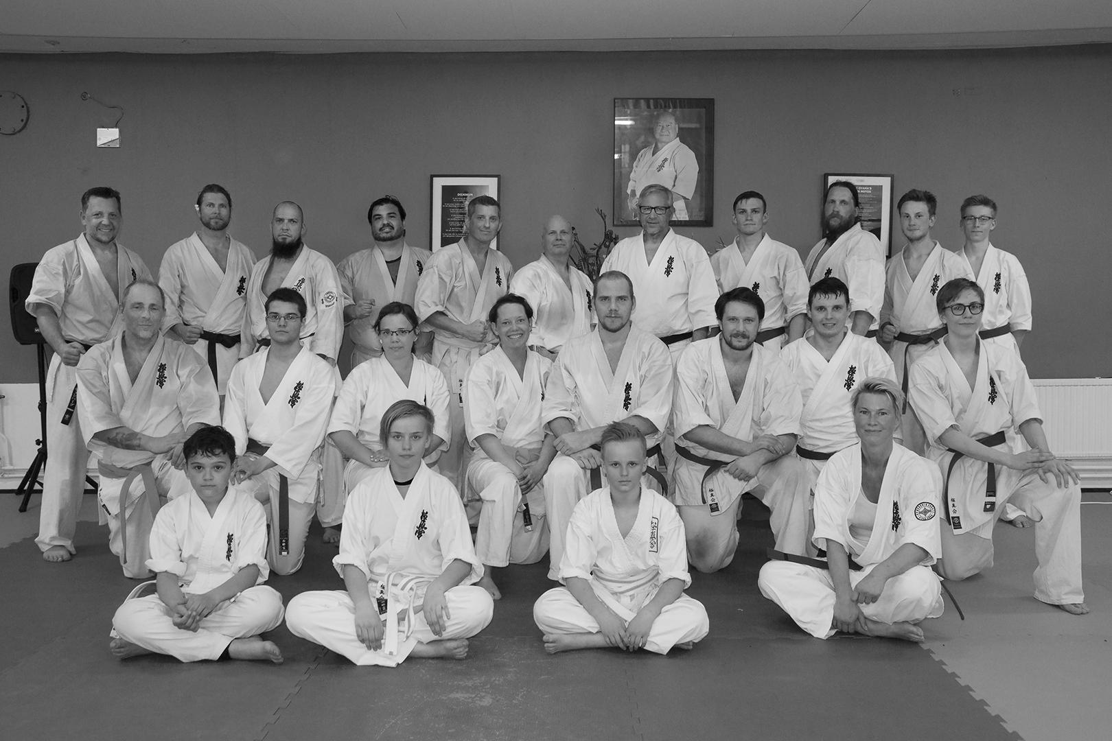 Vi har ett gott samarbete med kyokushin karateklubbarna i regionen. Denna bild kommer från ett  fightingläger i vår Dojo, Vt 2018.